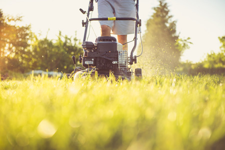 Photo of a young man mowing the grass during the beautiful evening.