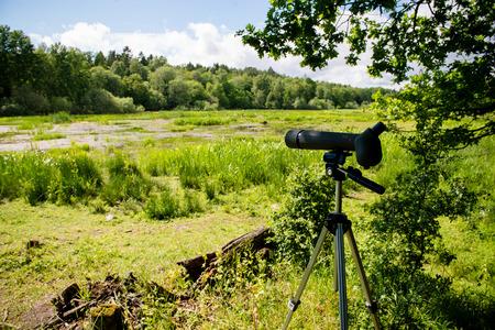 birdwatching: Birdwatching in the wilderness