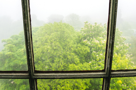 View from the old window, trees and fog visible outside, gloomy scene.