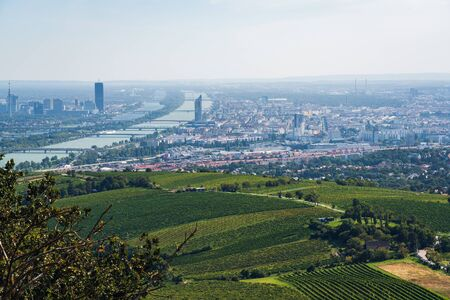 Aerial Photo of Vienna, capital city of Austria, Europe - vineyards in the foreground 免版税图像