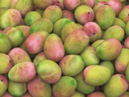 studio lighting: Pile of mangoes under neutral studio lighting. This image is 3d illustration.