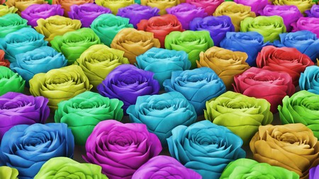 Neat uniform array of variously coloured roses under clean studio lighting. This image is a 3d illustration. Stock Photo