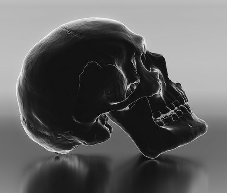 Holographically styled realistic skull model on on a reflective infinite place. This image is a 3d render.