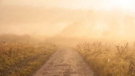 sunligh: fog in thailand Stock Photo