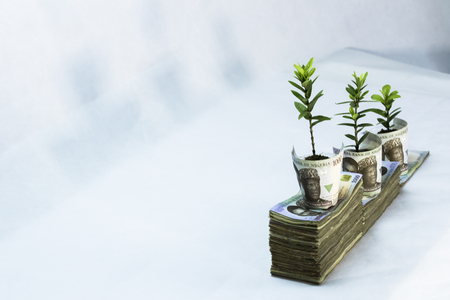 Money investment Growthy in naira white background