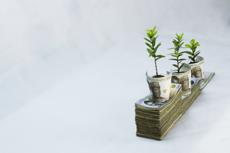 Money investment and Growth in naira white background Stock Photo