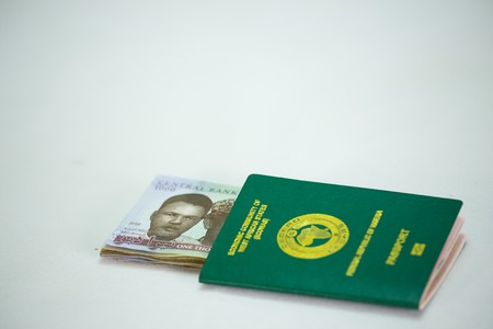 International Passport with local currency notes Stock Photo - 124280910