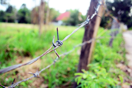 canada agriculture: Old wooden post and barbed wire farm fence. Stock Photo