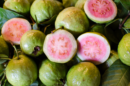 Red Guava Stock Photo