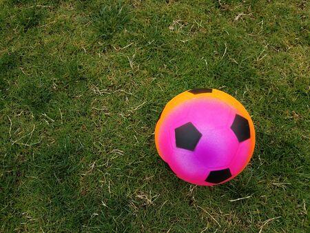 Pallone da calcio colorata in erba verde Archivio Fotografico - 78087122
