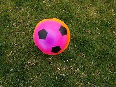Pallone da calcio colorato su erba verde Archivio Fotografico - 78136796