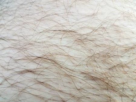hair and skin up close Banco de Imagens