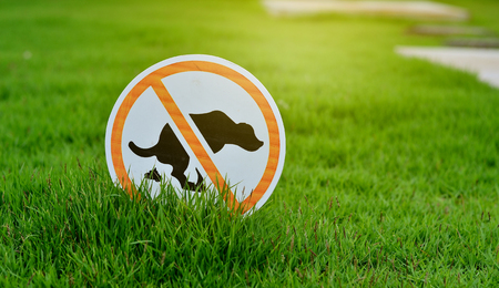 excrement: Sign No Dog Poop on the lawn of green grass