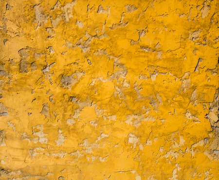 crazed: cement wall texture