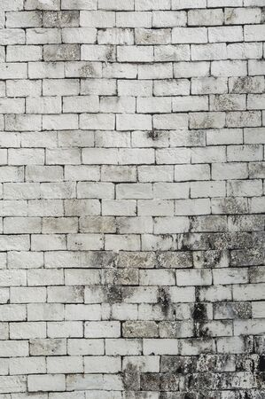 old brick wall: White color painted brick wall texture. Background for text or image. Stock Photo