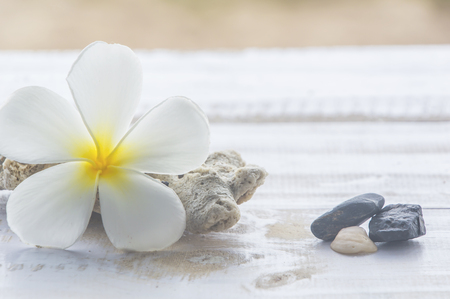 Tiare flowers,corals and stones on white wood,Sand background. Stock Photo