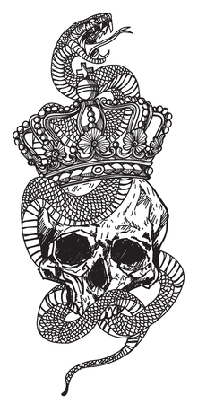 Tattoo art a snake wrapped around a skull hand drawing and sketch with line art illustration isolated on white background.