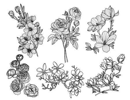 Flores dibujo a mano y boceto en blanco y negro.