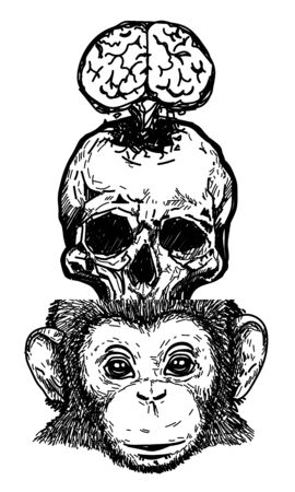 Tattoo art skull brain monkey drawing and sketch black and white isolated on white background. Stok Fotoğraf - 137648292