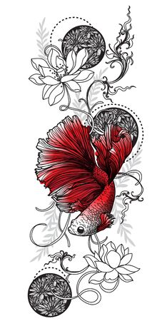 Tattoo art siamese fighting fish  hand drawing and sketch