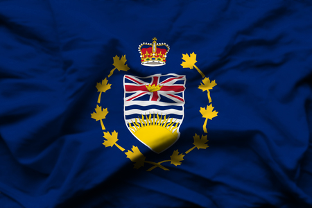 Lieutenant-Governor Of British Columbia 3D wrinkled flag illustration. Usable for background and texture.