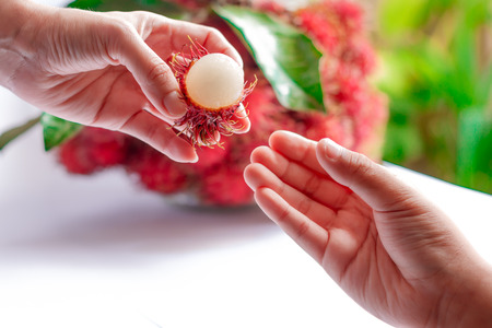 hands off: Rambutan peels cut a slit in the skin off half with the womens hands for her children.