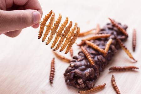 gusanos: insectos fritos - gusano de la madera, gusano de bambú crujientes insectos y recubiertos de caramelo bares de obleas de chocolate en el fondo de madera. Gran fuente de proteínas para los niños, Seleccione el enfoque