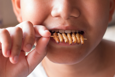 Children eating bamboo worm insect crispy and chocolate wafer bars ingredients include almonds, cashews. Fried insects great source of protein for children, Select focus