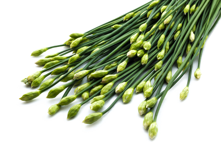 alliaceae: Chives flower or Chinese chive isolated on white background