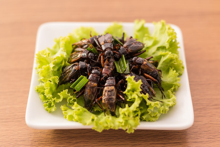 Fried insects - Cricket insect crispy with pandan