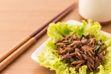 Fried insects - Cricket insect crispy with pandan after fried and add a light coating of sauce and garnish Thai pepper powder on white dish with chopsticks, tea, on wooden background, Select focus Stock Photo