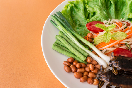 Papaya Salad - Lethocerus indicus and Green Papaya Salad, long-beans, roasted peanuts, tomatoes, lemon, carrot and lettuce in white plate. Traditional spicy Thai food. Closeup