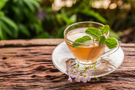 Ginger teacup with ginger slices and mint leaf on a rustic wooden table, nature background, Beverage concept, Close up, Selective Focus.