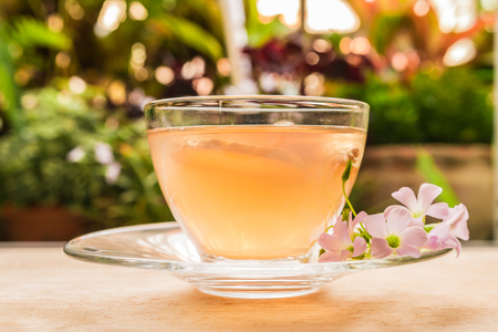 Ginger teacup with ginger slices and pink flower on a wooden table, nature background, Beverage concept, Close up, Selective Focus.