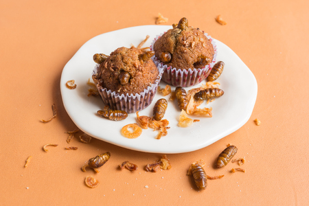 Banana cupcakes with insect - Banana cupcakes with worm insect and crispy shallots fried on orange tablecloth background. Healthy meal high protein diet concept. Selective focus.