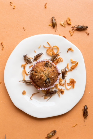 Banana cupcakes with insect foods - Banana cupcakes with insect foods and crispy shallots fried on orange tablecloth background. Healthy meal high protein diet concept. Top view, Selective focus. Stock Photo