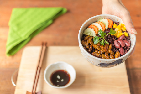 Insects food with Rice Berry -  Human female hands holding insects food with Rice Berry in a retro bowl. Healthy meal high protein diet concept. Close-up, Selective focus. Stock Photo