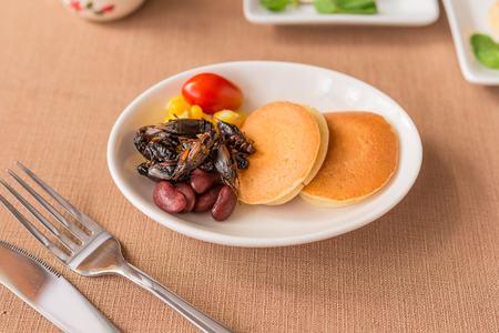 Insect pancake - Cricket insect, Corn, Red bean, Tomato with pancakes in a white bowl for breakfast. Close-up, Selective focus. Stock Photo