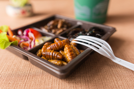 Insect food collection - Cricket, worm insects with vegetable salad in the brown food boxes. Healthy meal high protein diet concept. Close-up, Selective focus