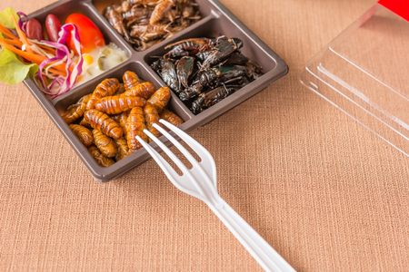 Insect food collection - Cricket, worm insects with vegetable salad in the brown food boxes. Healthy meal high protein diet concept. Close up.