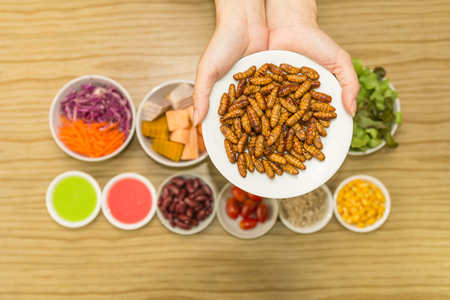 Fresh vegetable salad with worm insects - Human female hands cooking vegetable salad with worm insects in the kitchen on a wooden table. Healthy meal high protein diet concept. Top view.