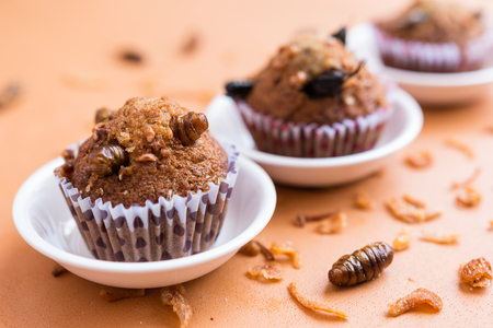 Banana cupcakes with insect foods - Banana cupcakes with insect foods on the small white bowl and crispy shallots fried on orange tablecloth background. Healthy meal high protein diet concept. Close-up, Selective focus. Stock Photo