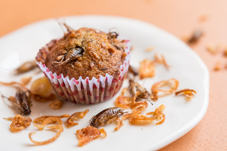 Banana cupcakes with insect - Banana cupcakes with worm insect and crispy shallots fried on orange tablecloth background. Healthy meal high protein diet concept. Close-up, Selective focus. Stock Photo