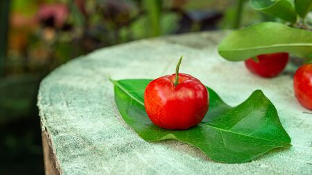 Cherry Thai or Acerola cherries fruit on wooden, high vitamin C and antioxidant fruits. Selective focus.