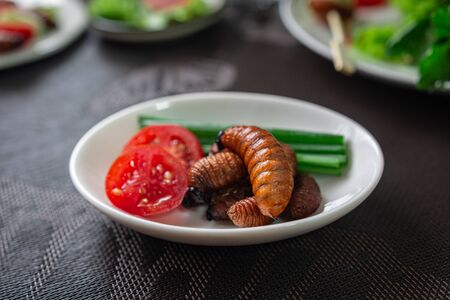 Fried Worm, Insect food with vegetable salad in the white bowl. Healthy meal high protein diet concept. Closeup, Selective focus. Zdjęcie Seryjne