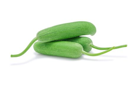 Gourd,  Luffa, Sponge gourd or Vegetable sponge isolated on white background . Selective focus.