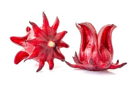 Roselle, isolated on a white background. Closeup Zdjęcie Seryjne