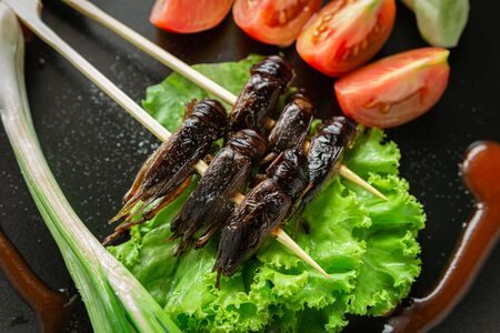 Fried Crickets, Insect food in the skewer on a brown plate. Closeup, Top view