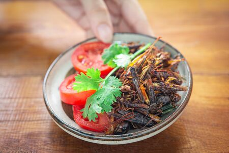Womans hand holding fried Crickets in a bowl, Insect food with Vegetables, Tomatoes on wooden table background. Closeup, Selective focus.