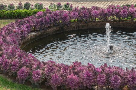 Fountain in the flower garden of central park on a summer day.